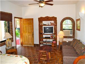 The ground floor living room has satellite TV
