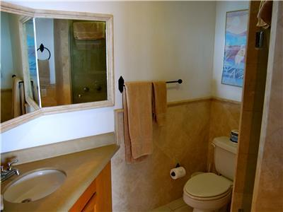 The front TV room bathroom has a shower