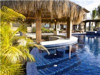 Swim up Palapa Bar with fridge and dining set