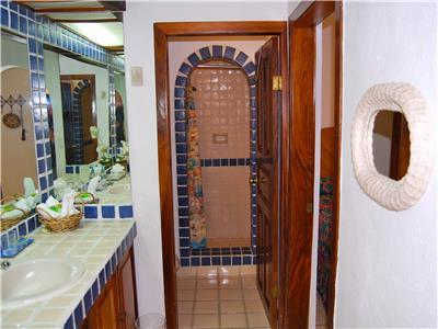 Guest bathroom has a shower