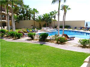 Pool and Jacuzzi with tropical surroundings!