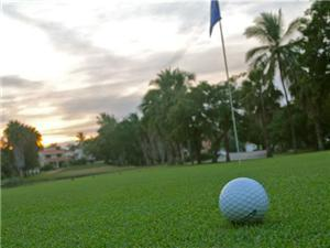 Golf Course Properties Properties