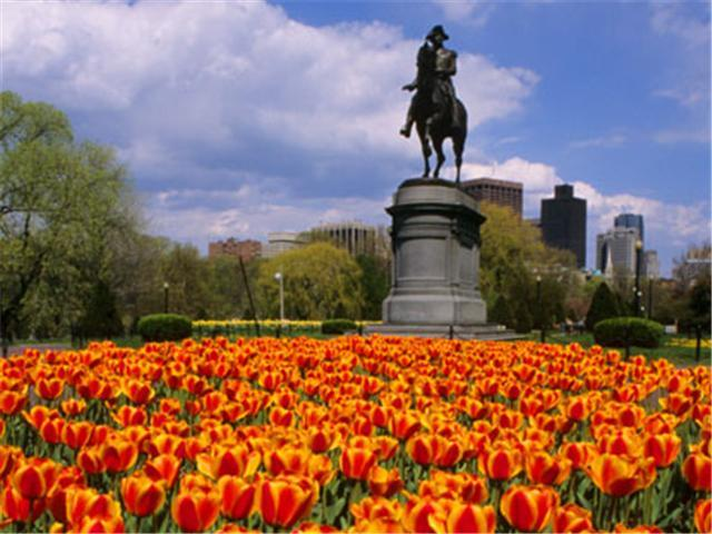 Boston Common - park nearby Boston rental
