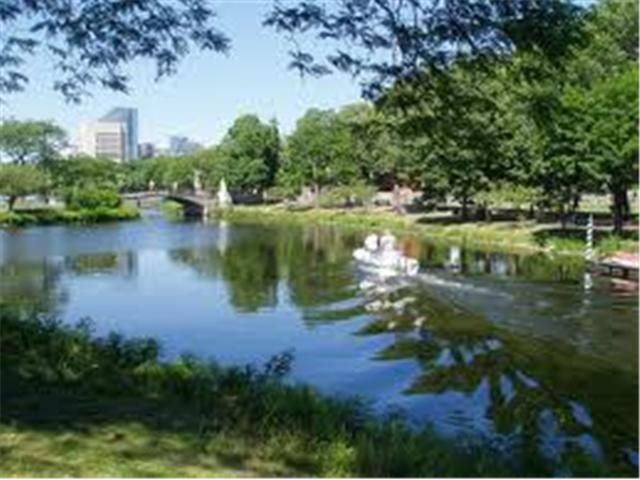 Charles River Esplanade -Walk Nearby Boston Rental