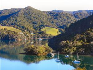 Great Barrier Island Properties