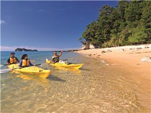 guided sea kayaking