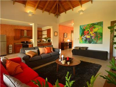 Penthouse Overlooking The Tropical Garden Rentals & Sales