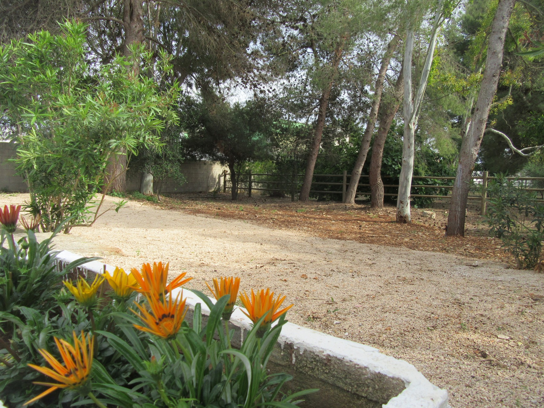 Ferienhaus Villa Mariposa n°3, only 200 meters from the beach (2354067), Porto Cesareo, Lecce, Apulien, Italien, Bild 21