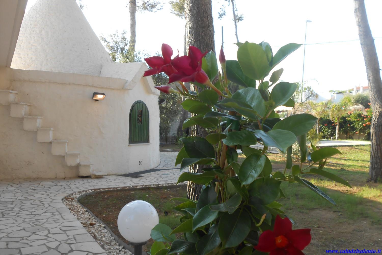 Ferienhaus Il Trullo, Exclusive House in Porto cesareo (2354053), Porto Cesareo, Lecce, Apulien, Italien, Bild 10