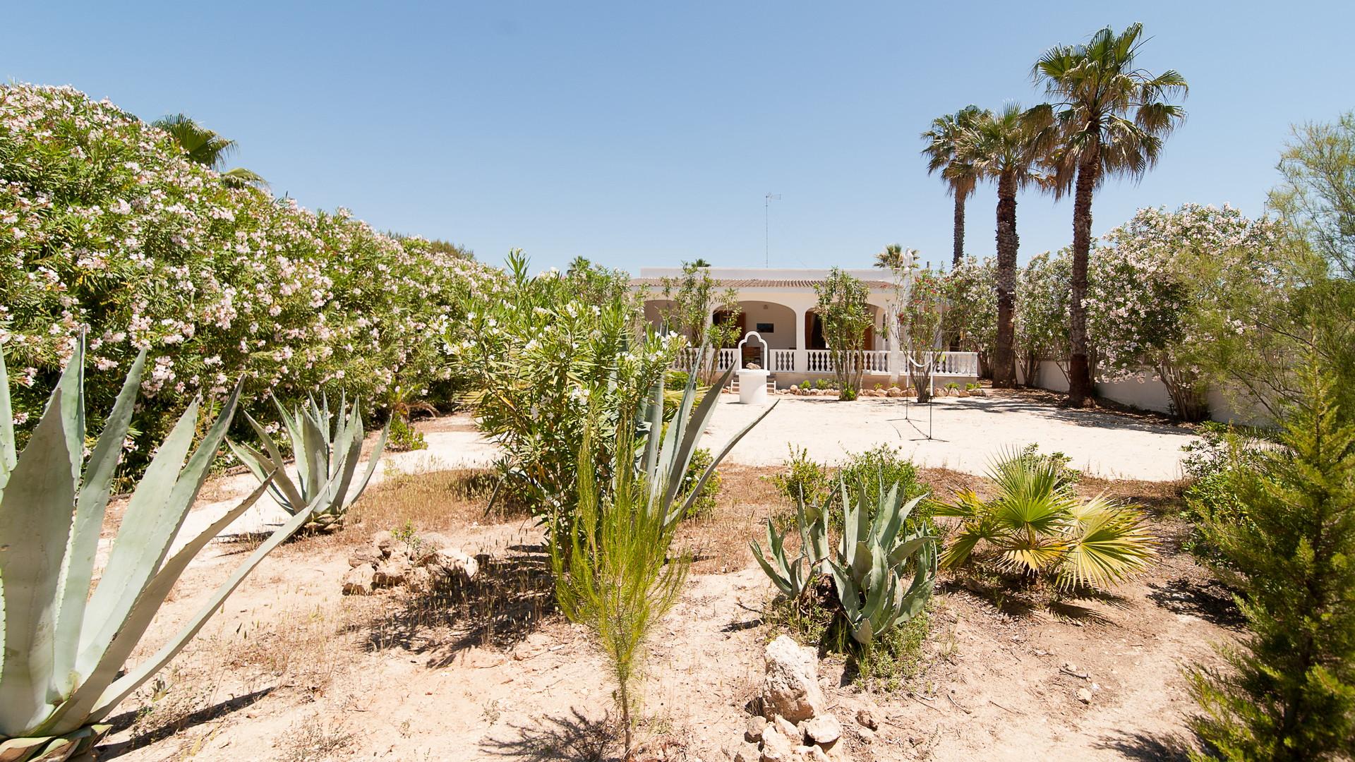 Ferienhaus Villa Sabbia Bianca with a direct access to free Beach (2354051), Porto Cesareo, Lecce, Apulien, Italien, Bild 2