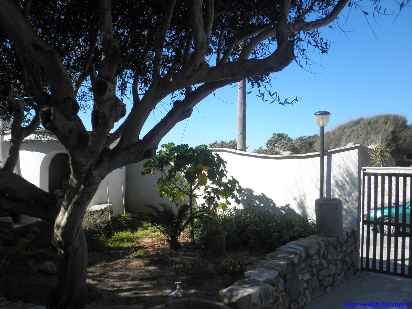 Ferienhaus Villa Desiderio, villa on the beach (2354061), Porto Cesareo, Lecce, Apulien, Italien, Bild 32