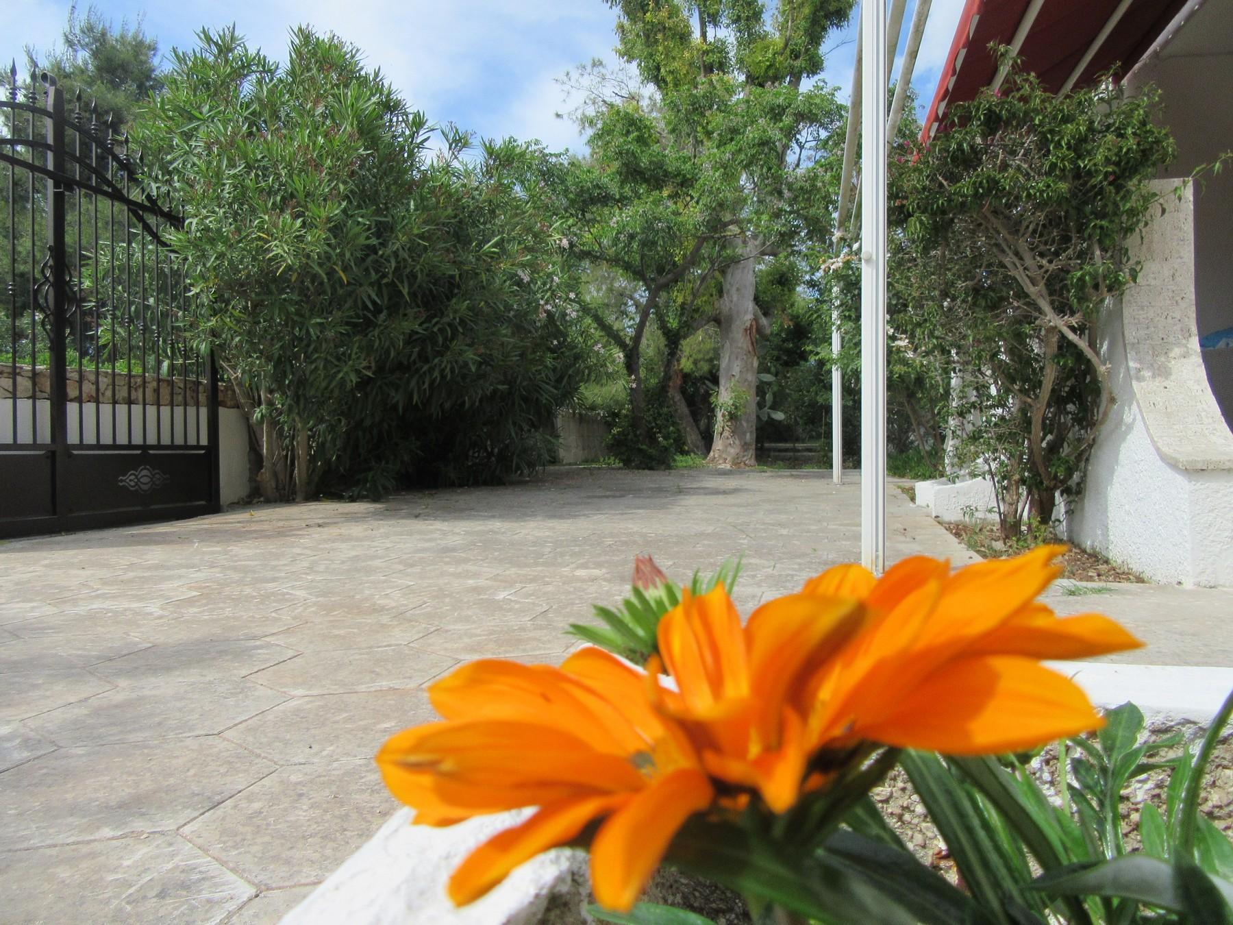 Ferienhaus Villa Mariposa n°3, only 200 meters from the beach (2354067), Porto Cesareo, Lecce, Apulien, Italien, Bild 19