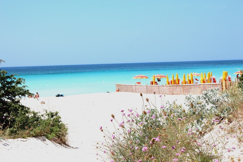 Ferienhaus Villa Sabbia Bianca with a direct access to free Beach (2354051), Porto Cesareo, Lecce, Apulien, Italien, Bild 35