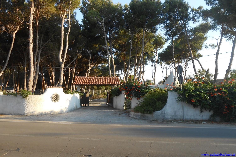 Ferienhaus Il Trullo, Exclusive House in Porto cesareo (2354053), Porto Cesareo, Lecce, Apulien, Italien, Bild 2