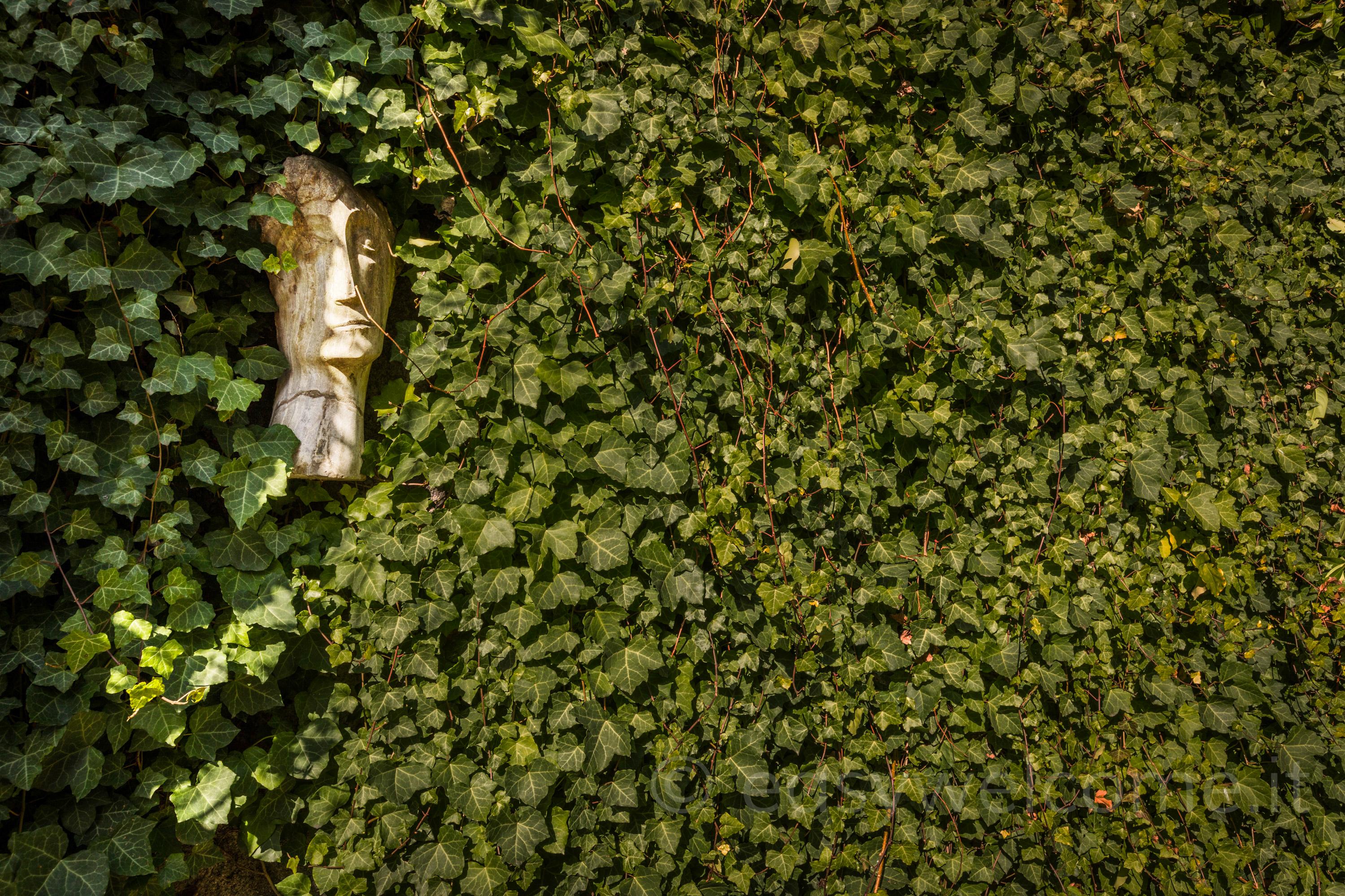 Ferienwohnung Ca' Maria Lavanda (2575345), Bellagio, Comer See, Lombardei, Italien, Bild 51
